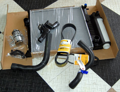 Z3 Coolant System Repair
